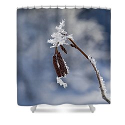 Delicate Winter Shower Curtain by Mike  Dawson