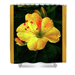 Delicate Yellow Flower Shower Curtain
