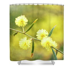 Shower Curtain featuring the photograph Delights Of An Aussie Spring by Linda Lees