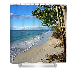 Delnor Wiggins Pass State Park Shower Curtain