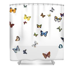 Delphine Shower Curtain by Amy Kirkpatrick