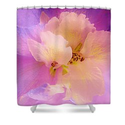 Delphinium Abstract Shower Curtain