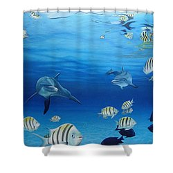 Delphinus Shower Curtain by Angel Ortiz