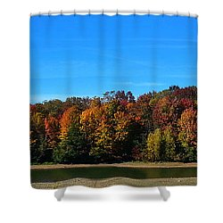 Shower Curtain featuring the photograph Delta Lake State Park Foliage by Diane E Berry
