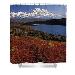 Denali Evening Shower Curtain