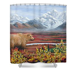 Denali Highway Visitor Shower Curtain by Dee Carpenter