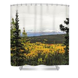 Denali National Park Landscape Shower Curtain