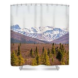 Denali Wilderness Beauty Shower Curtain by Allan Levin