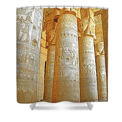 Dendera Temple Shower Curtain by Nigel Fletcher-Jones