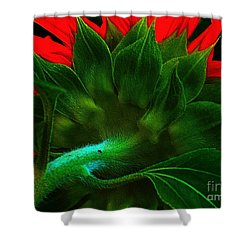 Shower Curtain featuring the photograph Derriere by Elfriede Fulda