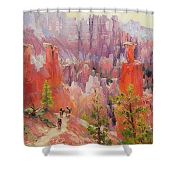Descent Into Bryce Shower Curtain