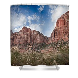 Descent Into Zion Shower Curtain