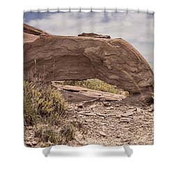 Desert Badlands Shower Curtain by Melany Sarafis