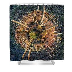 Shower Curtain featuring the photograph Desert Big Bang by Lynn Geoffroy