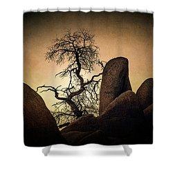 Desert Bonsai II Shower Curtain