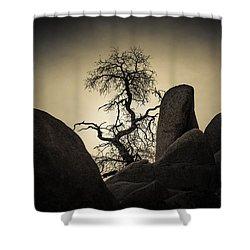 Desert Bonsai Shower Curtain