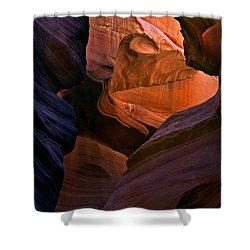 Desert Bridge Shower Curtain by Mike  Dawson