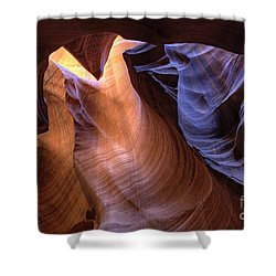 Desert Camel Shower Curtain