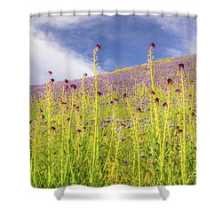 Desert Candles At Carrizo Plain Shower Curtain by Marc Crumpler