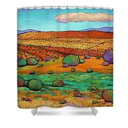 Desert Day Shower Curtain by Johnathan Harris