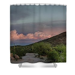 Desert Delight Shower Curtain