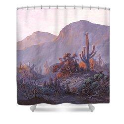 Desert Dessert Shower Curtain