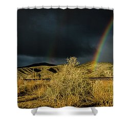 Desert Double Rainbow Shower Curtain