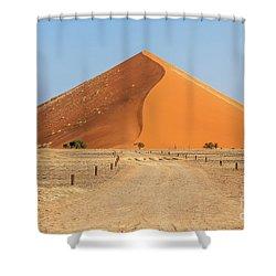 Desert Dune Shower Curtain