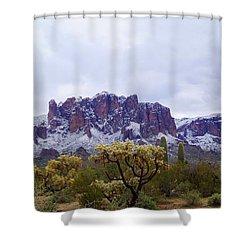 Desert Dusting Shower Curtain