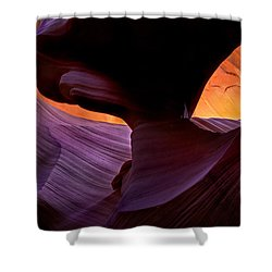 Desert Eye Shower Curtain by Mike  Dawson