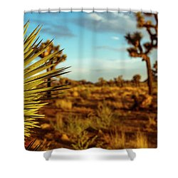 Desert Fan Shower Curtain