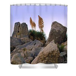 Desert Flags - Cropped Version Shower Curtain
