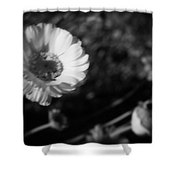 Desert Flower In Holga Mood Shower Curtain