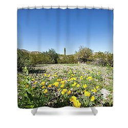 Shower Curtain featuring the photograph Desert Flowers And Cactus by Ed Cilley
