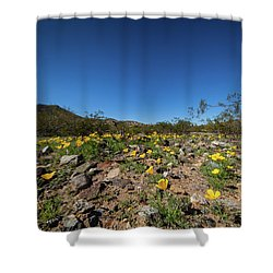 Desert Flowers In Spring Shower Curtain by Ed Cilley