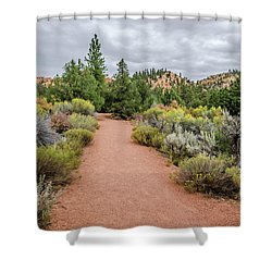 Desert Fresh Shower Curtain