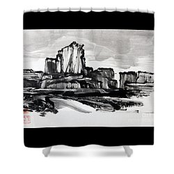 Desert Shower Curtain