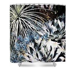 Shower Curtain featuring the photograph Desert Garden by Judy Wolinsky