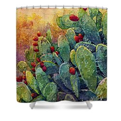 Desert Gems 2 Shower Curtain