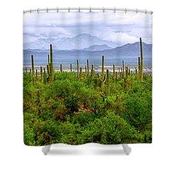 Desert Green Shower Curtain