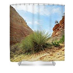 Desert Greenery Shower Curtain