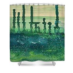 Desert Horizon Shower Curtain