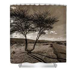 Desert Landmarks  Shower Curtain