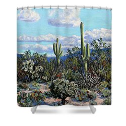 Desert Landscape Shower Curtain by M Diane Bonaparte
