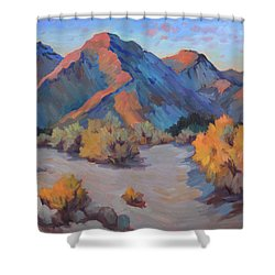 Shower Curtain featuring the painting Desert Light by Diane McClary