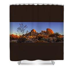 Desert Light Shower Curtain