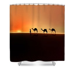 Shower Curtain featuring the photograph Desert Mirage by Valerie Anne Kelly