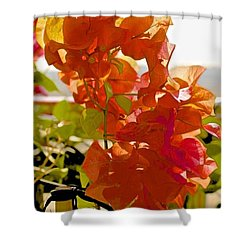 Desert Orange Shower Curtain