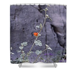 Shower Curtain featuring the photograph Desert Orange by Suzanne Oesterling