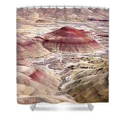 Desert Palette Shower Curtain by Mike  Dawson